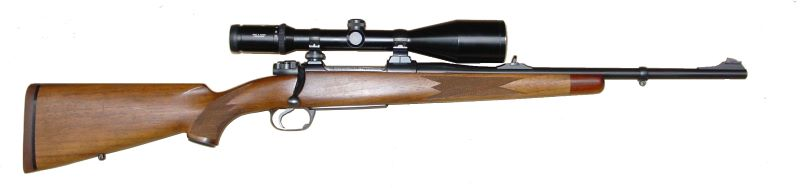 Modern Hunting Rifle with scope