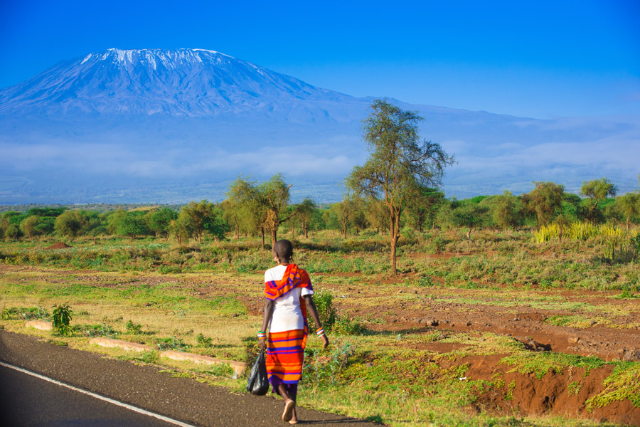 africa tanzania mount kilimanjaro gallery lady on road