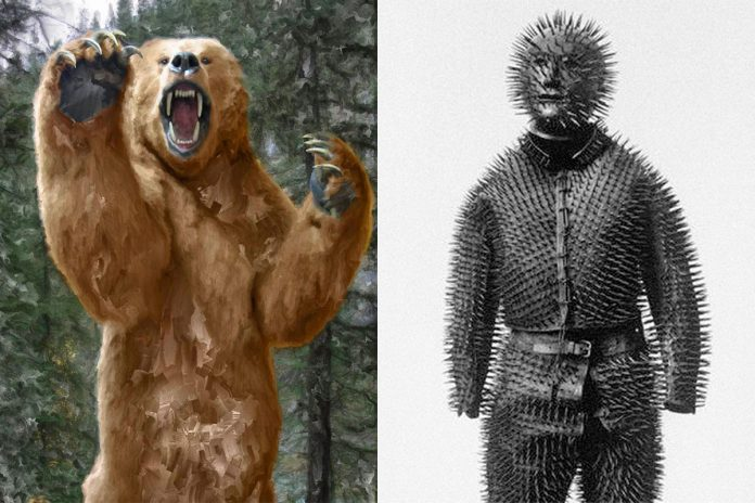 bear vs siberian bear hunter suit